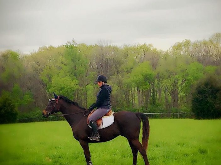 America's Best racing: Q&A on Horse Aftercare with Retired Racehorse Project's Jen Roytz