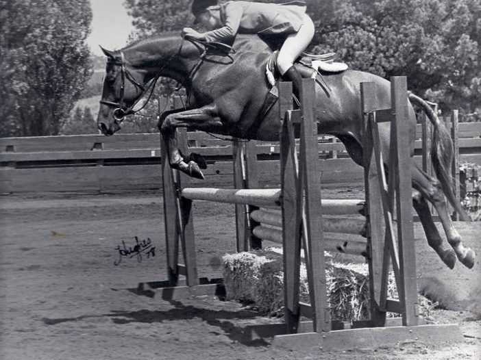 The Plaid Horse: Throwback Thursday Trends We Miss: Thoroughbred Hunters