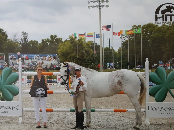 TAKE2 News: Touching Story, A Rescued Mare Now a TAKE2 Champion