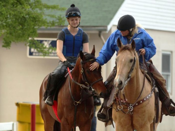 America's Best Racing: New Racehorse Aftercare Funding Initiative Announced in NY