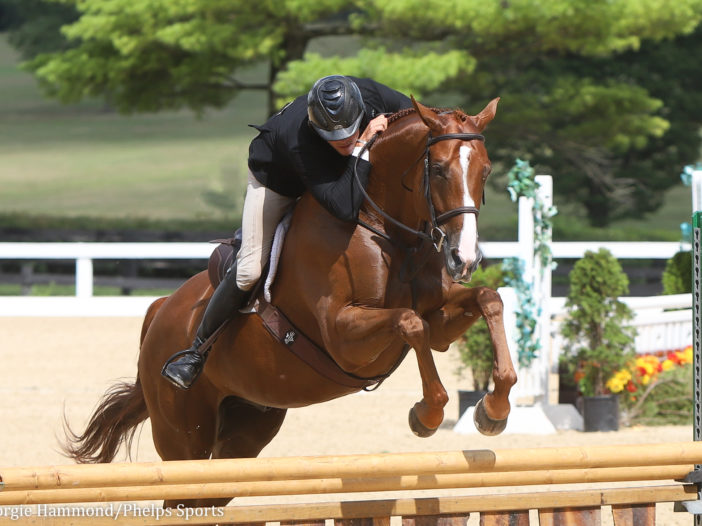 Phelps Sports: As Promised Takes Blue in TAKE2 Hunters at Kentucky Summer Classic