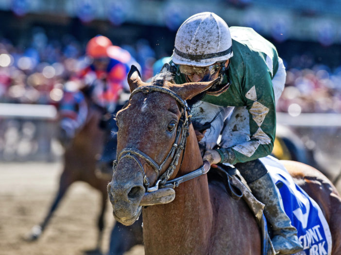 Racing Sentinel: NY-Bred Millionaire Zivo To Lead Post Parade For Rick Violette Stakes