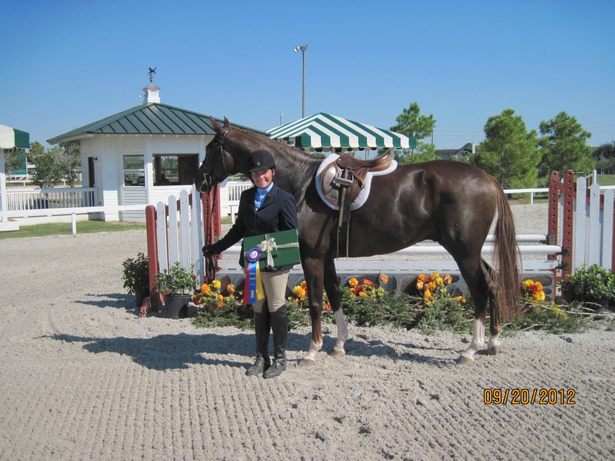 368-joli-cheval-tb-potter-hunter-class-champion-2